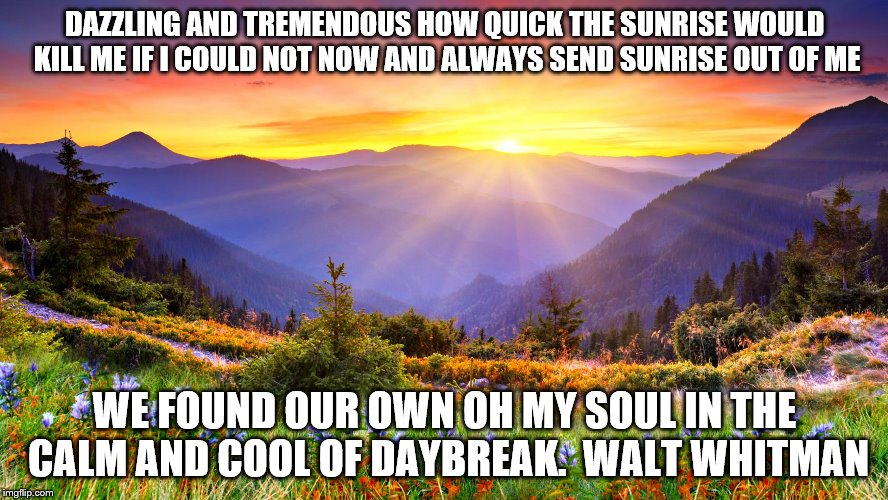 Sunrise | DAZZLING AND TREMENDOUS HOW QUICK THE SUNRISE WOULD KILL ME IF I COULD NOT NOW AND ALWAYS SEND SUNRISE OUT OF ME WE FOUND OUR OWN OH MY SOUL | image tagged in sunrise | made w/ Imgflip meme maker