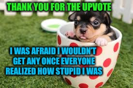 THANK YOU FOR THE UPVOTE I WAS AFRAID I WOULDN'T GET ANY ONCE EVERYONE REALIZED HOW STUPID I WAS | made w/ Imgflip meme maker