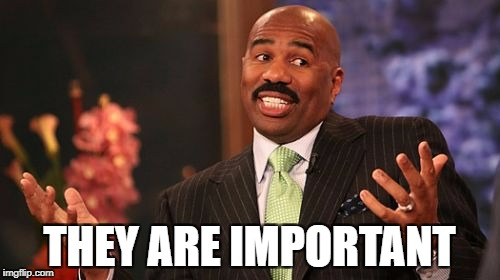 Steve Harvey Meme | THEY ARE IMPORTANT | image tagged in memes,steve harvey | made w/ Imgflip meme maker