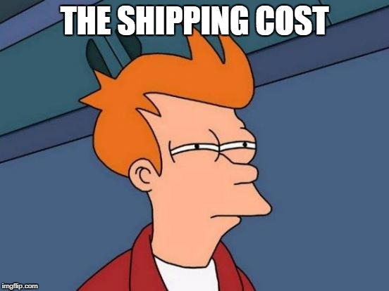 Futurama Fry Meme | THE SHIPPING COST | image tagged in memes,futurama fry | made w/ Imgflip meme maker