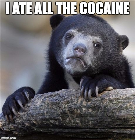 Confession Bear Meme | I ATE ALL THE COCAINE | image tagged in memes,confession bear,AdviceAnimals | made w/ Imgflip meme maker
