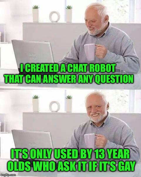 Hide the Pain Harold Meme | I CREATED A CHAT ROBOT THAT CAN ANSWER ANY QUESTION IT'S ONLY USED BY 13 YEAR OLDS WHO ASK IT IF IT'S GAY | image tagged in memes,hide the pain harold | made w/ Imgflip meme maker