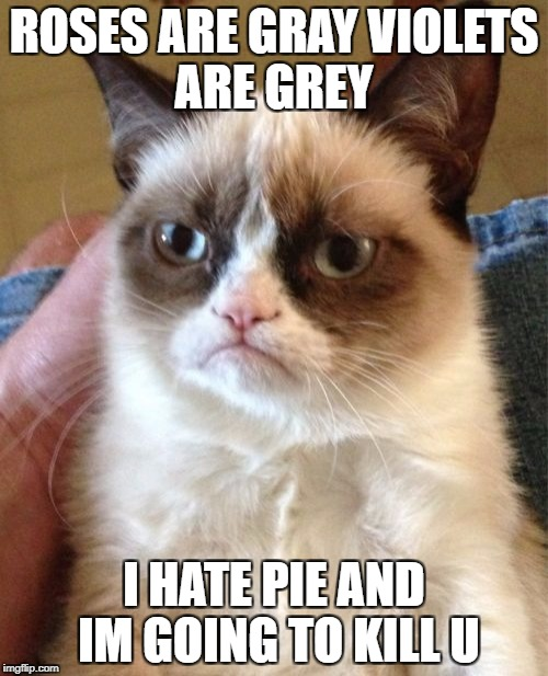 Grumpy Cat Meme | ROSES ARE GRAY VIOLETS ARE GREY I HATE PIE AND IM GOING TO KILL U | image tagged in memes,grumpy cat | made w/ Imgflip meme maker