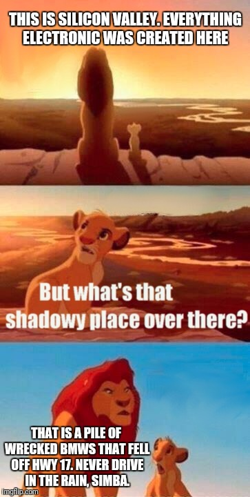 Simba Shadowy Place Meme | THIS IS SILICON VALLEY. EVERYTHING ELECTRONIC WAS CREATED HERE THAT IS A PILE OF WRECKED BMWS THAT FELL OFF HWY 17. NEVER DRIVE IN THE RAIN, | image tagged in memes,simba shadowy place | made w/ Imgflip meme maker