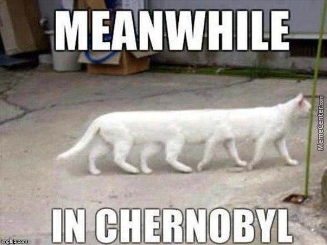 This is for raycat | image tagged in chernobyl,meanwhile in | made w/ Imgflip meme maker
