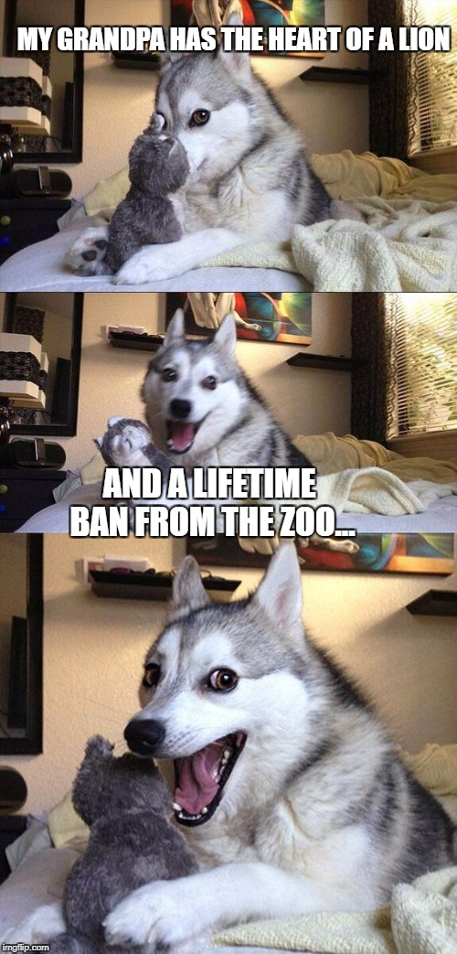 Bad Pun Dog Meme | MY GRANDPA HAS THE HEART OF A LION AND A LIFETIME BAN FROM THE ZOO... | image tagged in memes,bad pun dog | made w/ Imgflip meme maker