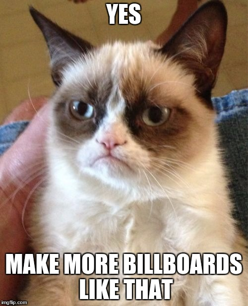 Grumpy Cat Meme | YES MAKE MORE BILLBOARDS LIKE THAT | image tagged in memes,grumpy cat | made w/ Imgflip meme maker