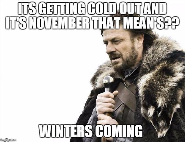 Brace Yourselves X is Coming Meme | ITS GETTING COLD OUT AND IT'S NOVEMBER THAT MEAN'S?? WINTERS COMING | image tagged in memes,brace yourselves x is coming | made w/ Imgflip meme maker