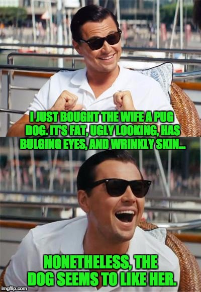 Leonardo DiCaprio Wall Street | I JUST BOUGHT THE WIFE A PUG DOG. IT'S FAT, UGLY LOOKING, HAS BULGING EYES, AND WRINKLY SKIN... NONETHELESS, THE DOG SEEMS TO LIKE HER. | image tagged in leonardo dicaprio wall street | made w/ Imgflip meme maker