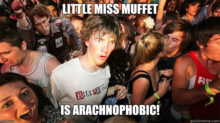 Send in Captain Obvious.  | LITTLE MISS MUFFET IS ARACHNOPHOBIC! | image tagged in sudden clarity clarence large,memes,little miss muffet,nursery rhymes,arachnophobia,spiders | made w/ Imgflip meme maker