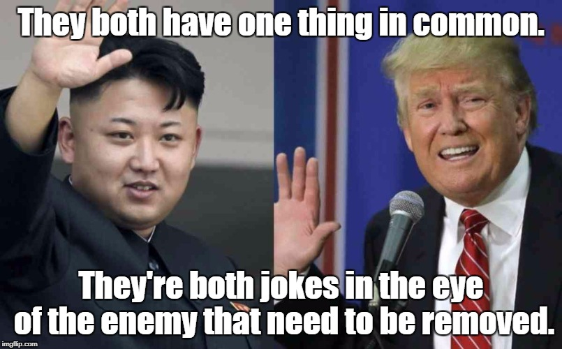 They both have one thing in common. They're both jokes in the eye of the enemy that need to be removed. | image tagged in kim jong un donald trump | made w/ Imgflip meme maker