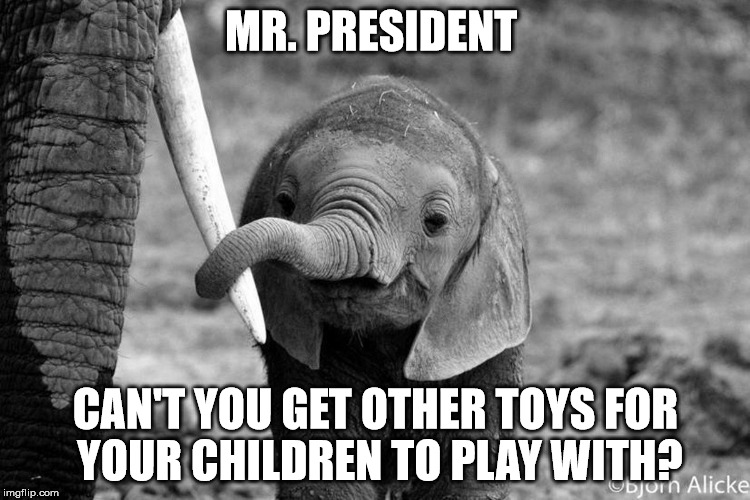 Ban trophy hunting imports! | MR. PRESIDENT CAN'T YOU GET OTHER TOYS FOR YOUR CHILDREN TO PLAY WITH? | image tagged in elephant and mom,elephants,donald trump,trophy hunting,potus,trump is an asshole | made w/ Imgflip meme maker