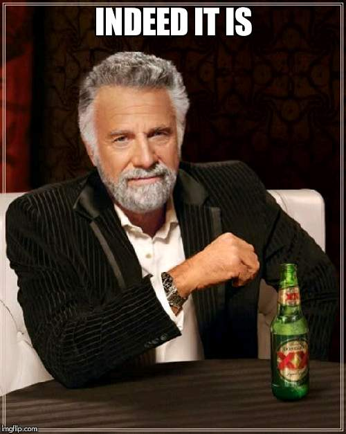 The Most Interesting Man In The World Meme | INDEED IT IS | image tagged in memes,the most interesting man in the world | made w/ Imgflip meme maker