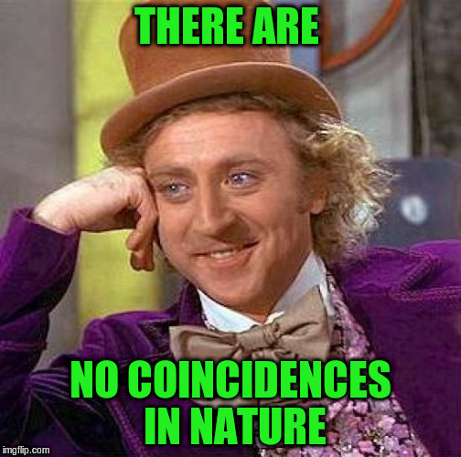 Creepy Condescending Wonka Meme | THERE ARE NO COINCIDENCES IN NATURE | image tagged in memes,creepy condescending wonka | made w/ Imgflip meme maker