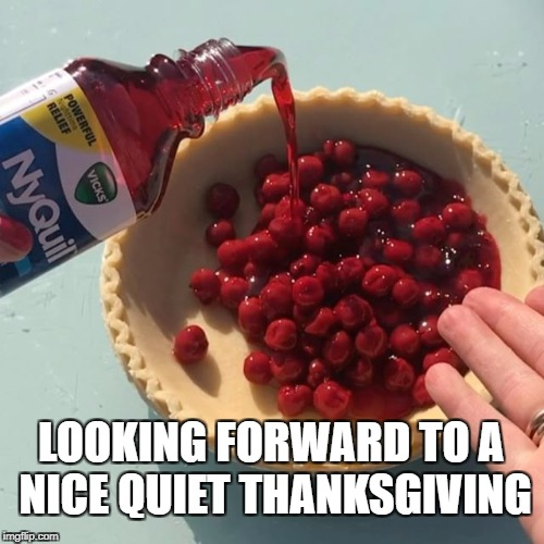 Keep the arguments to a minimum... | LOOKING FORWARD TO A NICE QUIET THANKSGIVING | image tagged in funny memes,thanksgiving,donald trump | made w/ Imgflip meme maker