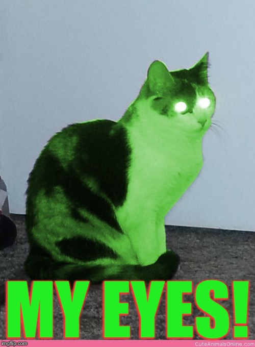 Hypno Raycat | MY EYES! | image tagged in hypno raycat | made w/ Imgflip meme maker