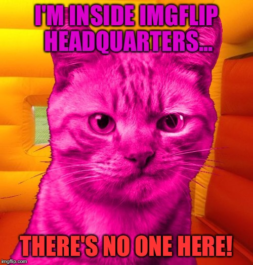 RayCat Without A Cause | I'M INSIDE IMGFLIP HEADQUARTERS... THERE'S NO ONE HERE! | image tagged in dissat raycat,nsfw weekend,not safe for featuring,memes,stealth mode tags | made w/ Imgflip meme maker