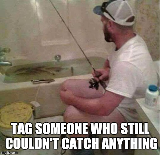 Gone fishing | TAG SOMEONE WHO STILL COULDN'T CATCH ANYTHING | image tagged in imgflip,memes,fishing,fish | made w/ Imgflip meme maker