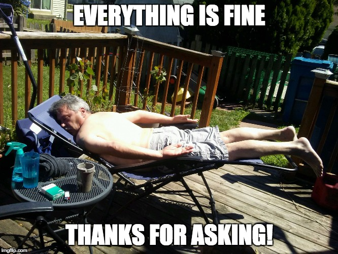 EVERYTHING IS FINE THANKS FOR ASKING! | image tagged in planking world champ | made w/ Imgflip meme maker