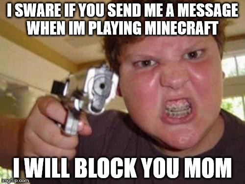 minecrafter | I SWARE IF YOU SEND ME A MESSAGE WHEN IM PLAYING MINECRAFT I WILL BLOCK YOU MOM | image tagged in minecrafter | made w/ Imgflip meme maker