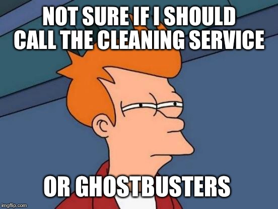 Futurama Fry Meme | NOT SURE IF I SHOULD CALL THE CLEANING SERVICE OR GHOSTBUSTERS | image tagged in memes,futurama fry | made w/ Imgflip meme maker