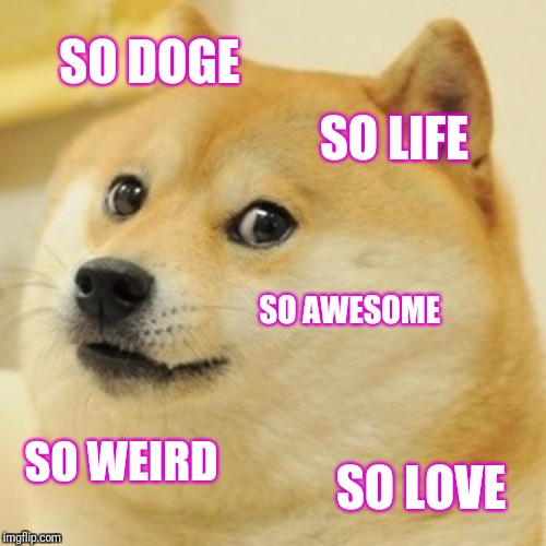 Doge Meme | SO DOGE SO LIFE SO AWESOME SO WEIRD SO LOVE | image tagged in memes,doge | made w/ Imgflip meme maker