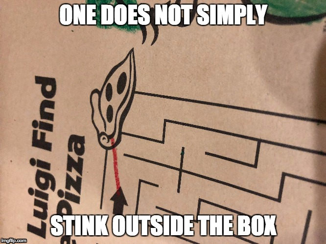 Stink outside the box | ONE DOES NOT SIMPLY STINK OUTSIDE THE BOX | image tagged in funny,broken_system | made w/ Imgflip meme maker