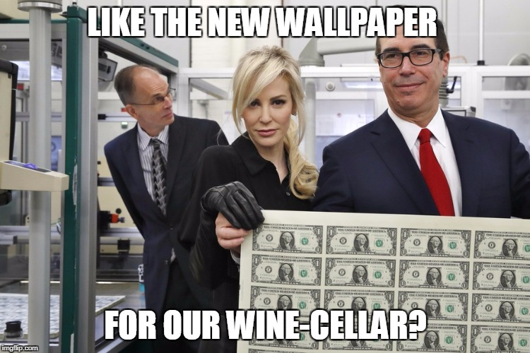Mnuchin's New Clothes | LIKE THE NEW WALLPAPER FOR OUR WINE-CELLAR? | image tagged in mnuchin | made w/ Imgflip meme maker