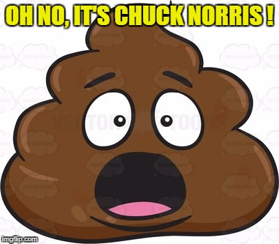 OH NO, IT'S CHUCK NORRIS ! | made w/ Imgflip meme maker