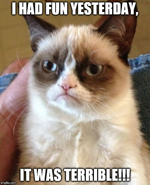 Grumpy Cat Meme | I HAD FUN YESTERDAY, IT WAS TERRIBLE!!! | image tagged in memes,grumpy cat | made w/ Imgflip meme maker