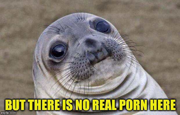 Awkward Moment Sealion Meme | BUT THERE IS NO REAL PORN HERE | image tagged in memes,awkward moment sealion | made w/ Imgflip meme maker