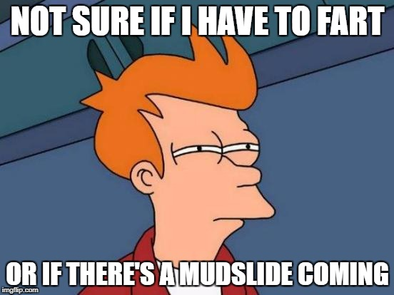 Futurama Fry | NOT SURE IF I HAVE TO FART OR IF THERE'S A MUDSLIDE COMING | image tagged in memes,futurama fry | made w/ Imgflip meme maker