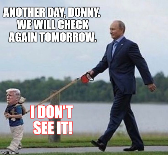 ANOTHER DAY, DONNY. WE WILL CHECK AGAIN TOMORROW. I DON'T SEE IT! | made w/ Imgflip meme maker
