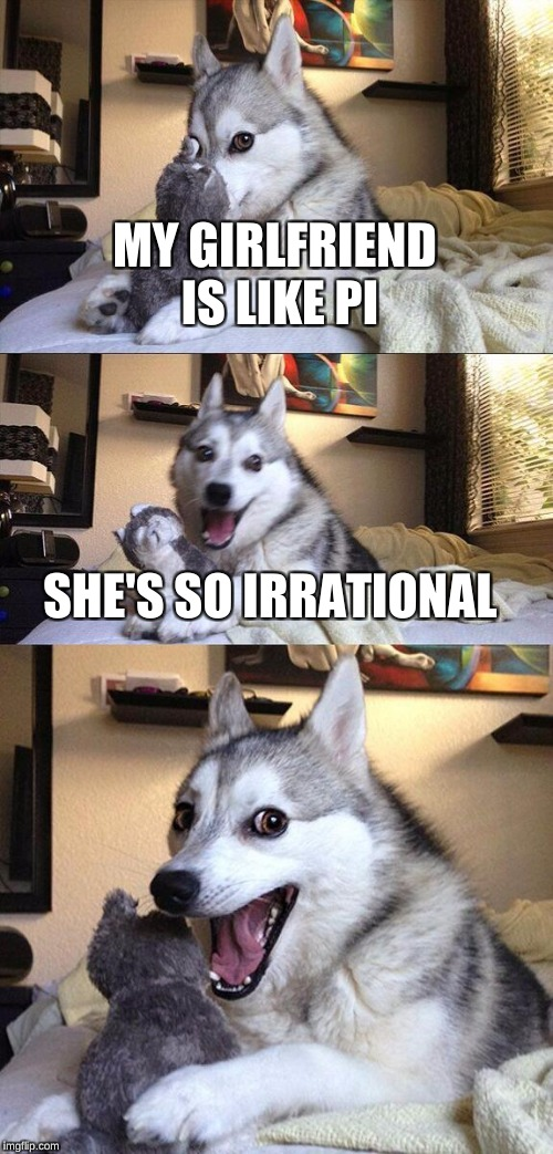 Bad Pun Dog Meme | MY GIRLFRIEND IS LIKE PI SHE'S SO IRRATIONAL | image tagged in memes,bad pun dog | made w/ Imgflip meme maker