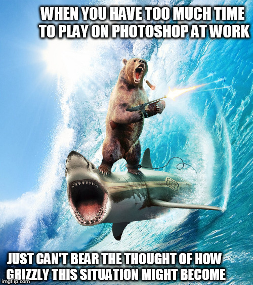surfs up bro | WHEN YOU HAVE TOO MUCH TIME TO PLAY ON PHOTOSHOP AT WORK JUST CAN'T BEAR THE THOUGHT OF HOW GRIZZLY THIS SITUATION MIGHT BECOME | image tagged in bear shark,grizzly bear,surf   wave | made w/ Imgflip meme maker