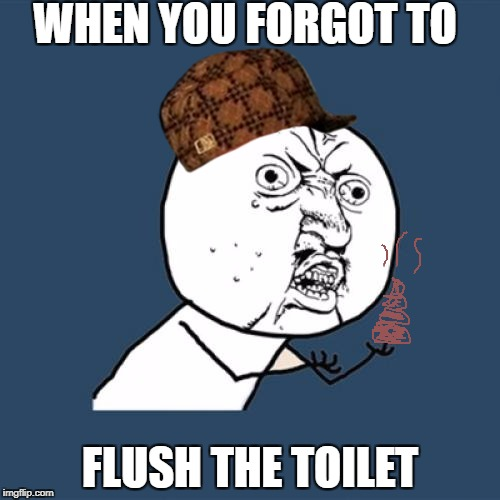 Y U No Meme | WHEN YOU FORGOT TO FLUSH THE TOILET | image tagged in memes,y u no,scumbag | made w/ Imgflip meme maker