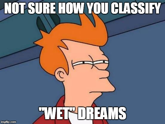 "Futurama Fry Meme | NOT SURE HOW YOU CLASSIFY ""WET"" DREAMS 