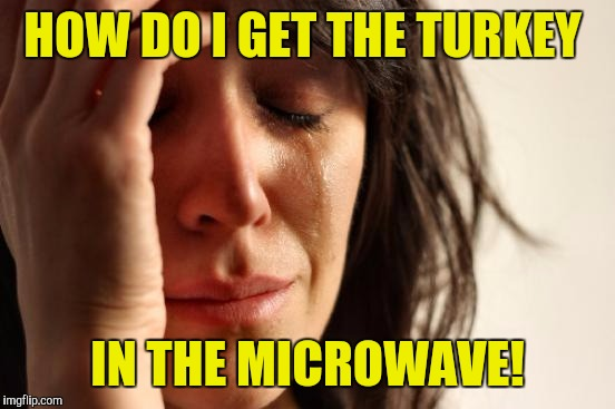 First World Problems Meme | HOW DO I GET THE TURKEY IN THE MICROWAVE! | image tagged in memes,first world problems | made w/ Imgflip meme maker