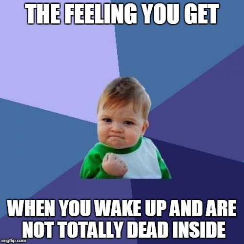 Success Kid Meme | THE FEELING YOU GET WHEN YOU WAKE UP AND ARE NOT TOTALLY DEAD INSIDE | image tagged in memes,success kid | made w/ Imgflip meme maker