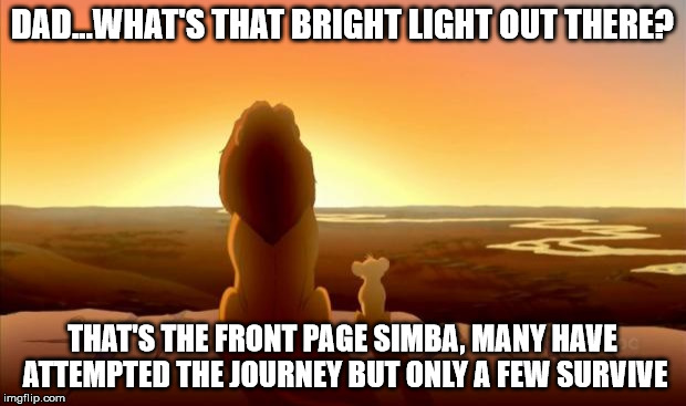 MUFASA AND SIMBA | DAD...WHAT'S THAT BRIGHT LIGHT OUT THERE? THAT'S THE FRONT PAGE SIMBA, MANY HAVE ATTEMPTED THE JOURNEY BUT ONLY A FEW SURVIVE | image tagged in mufasa and simba,memes | made w/ Imgflip meme maker