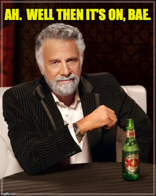 The Most Interesting Man In The World Meme | AH.  WELL THEN IT'S ON, BAE. | image tagged in memes,the most interesting man in the world | made w/ Imgflip meme maker