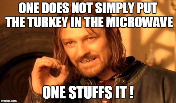 One Does Not Simply Meme | ONE DOES NOT SIMPLY PUT THE TURKEY IN THE MICROWAVE ONE STUFFS IT ! | image tagged in memes,one does not simply | made w/ Imgflip meme maker