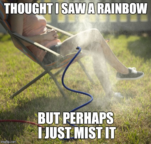 THOUGHT I SAW A RAINBOW BUT PERHAPS I JUST MIST IT | image tagged in summer | made w/ Imgflip meme maker