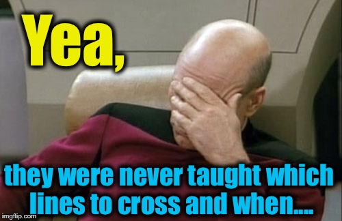 Captain Picard Facepalm Meme | Yea, they were never taught which lines to cross and when.... | image tagged in memes,captain picard facepalm | made w/ Imgflip meme maker