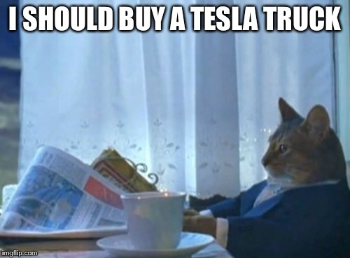 I Should Buy A Boat Cat Meme | I SHOULD BUY A TESLA TRUCK | image tagged in memes,i should buy a boat cat | made w/ Imgflip meme maker