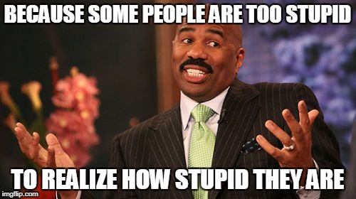 Steve Harvey Meme | BECAUSE SOME PEOPLE ARE TOO STUPID TO REALIZE HOW STUPID THEY ARE | image tagged in memes,steve harvey | made w/ Imgflip meme maker