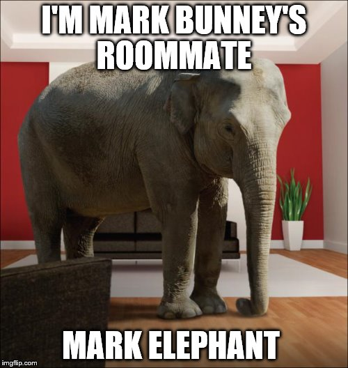 Elephant In The Room | I'M MARK BUNNEY'S ROOMMATE MARK ELEPHANT | image tagged in elephant in the room | made w/ Imgflip meme maker