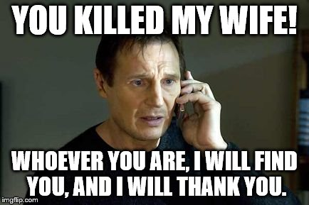 YOU KILLED MY WIFE! WHOEVER YOU ARE, I WILL FIND YOU, AND I WILL THANK YOU. | image tagged in i dont know who you are | made w/ Imgflip meme maker