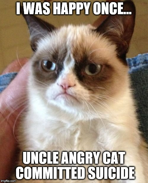 Grumpy Cat Meme | I WAS HAPPY ONCE... UNCLE ANGRY CAT COMMITTED SUICIDE | image tagged in memes,grumpy cat | made w/ Imgflip meme maker