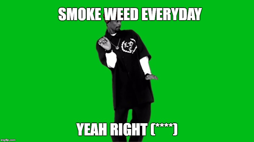 SMOKE WEED EVERYDAY YEAH RIGHT (****) | image tagged in snoop dogg | made w/ Imgflip meme maker